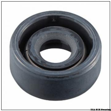 NOK ZF 80 USA  Bearing