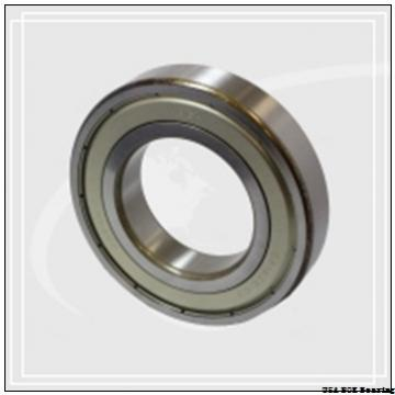 NOK ZF 25 USA  Bearing